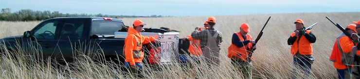 Guided Upland Hunts